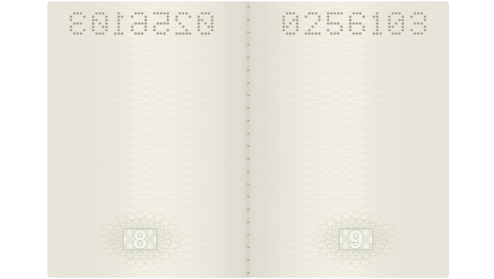 An open passport with blank pages